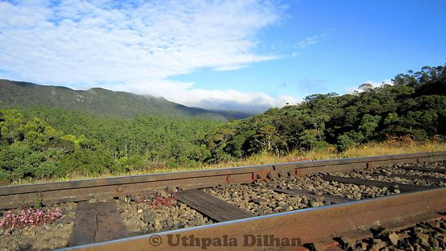 beautiful train track