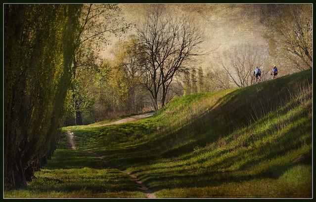 Paesaggi padani: in bici sugli argini  (Explored)