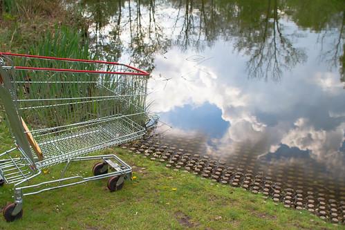 Dreamy Little Shopping Cart