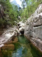 Remontée de la Frassiccia : dans le ruisseau, après le contournement vers l'altitude 800m