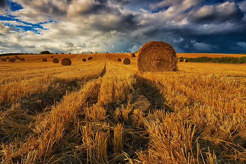 uk rural landscape countryside day cloudy farm farming scenic crops agriculture northyorkshire agricultural strawbales wilton pickering a170 roundbales canon1740f4 threateningsky rotoballe canon5dmk3 markmullenphotography