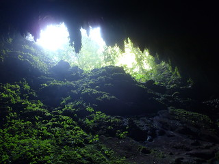 Rio Camuy Caverns | by Wavesonics