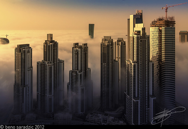 Foggy Business Bay