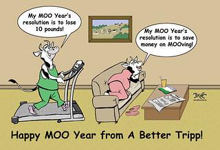 A Better Tripp New Year's Resolution | by A Better Tripp