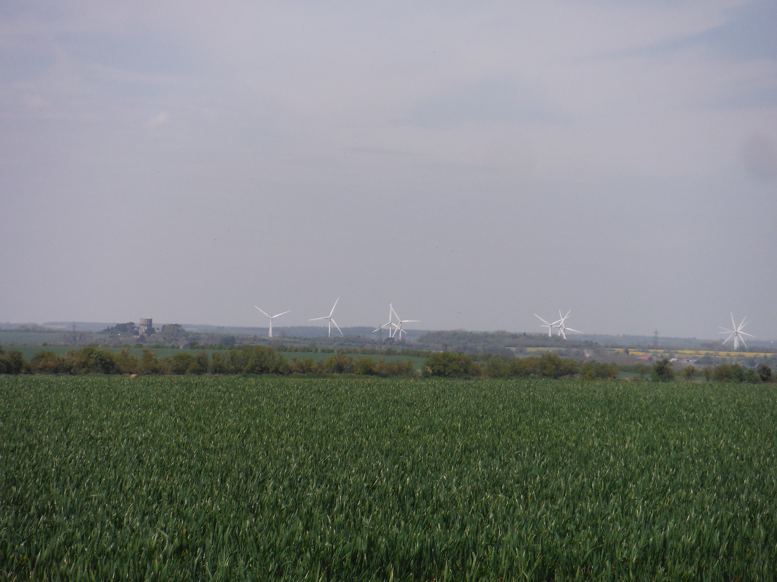 Wind Farm and Water Tower, from Claybush Hill SWC Walk 91 - Baldock Circular