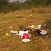 Ziua curateniei-Cernica. 24-septembrie-2011