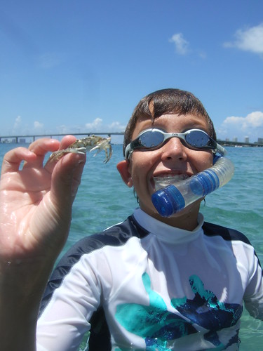 Mac catches another blue crab.