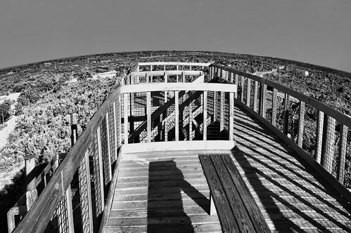 overlook observationdeck martincounty sunshinestate hobesound jonathandickinsonstatepark hobemountain
