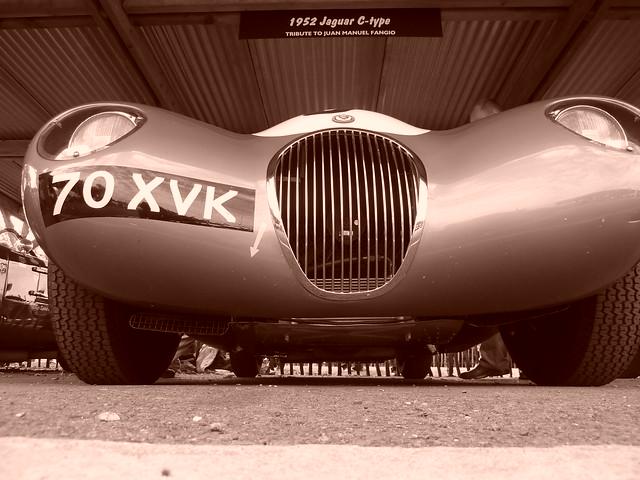 Jaguar C-Type 1952 - Tribute to Juan Manuel Fangio