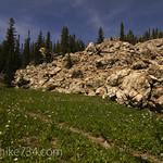 Flower Meadow next to a limestone boulder field