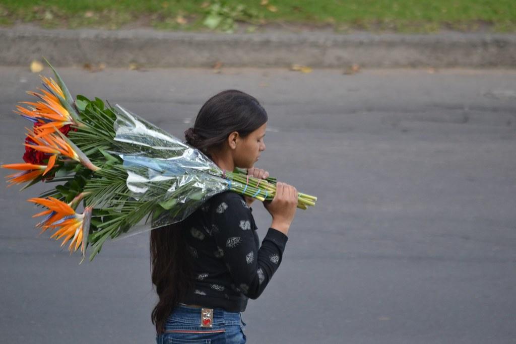 La vendedora de rosas (Girl selling roses)   Camilo Andrés