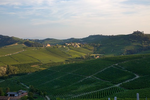 Barolo, Barolo and in the distance Barolo... | by Frans & all