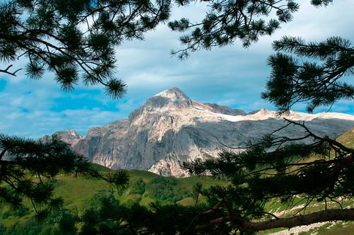 Mount Fisht. Caucasus Nature Reserve.