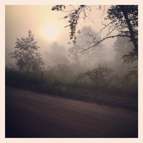 fog sunrise square morninglight foggy squareformat dirtroad ranchrudolf iphoneography instagram iphone4s