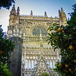 Oranges of Seville