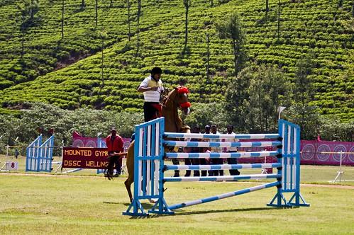 horse jump rider showjumping boldrider imposiblejump