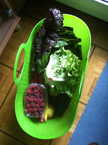 3rd and last basket of veggies for the summer | by Stephanie Booth