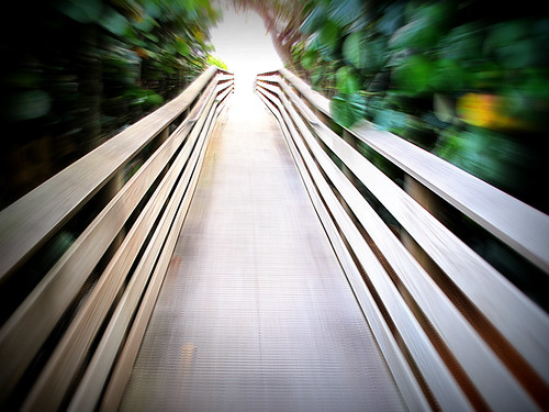 movement dof zoom boardwalk depth speen picmonkey