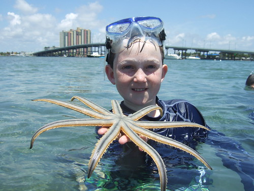 Spencer finds a cool 9 armed starfish! | by AdventureMIke.com