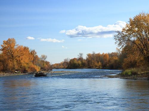 autumn usa river washingtonstate yakimariver