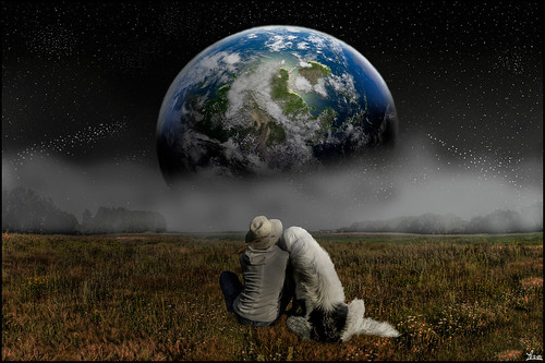 dog and boy watching the Earth set in across a field