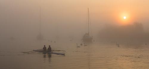 river stour riverstour mist misty fog rowers sunrise sun swans canon2470li canon5d3 5d 5d3 eos dorsetmisty dorset