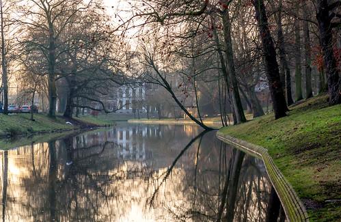 utrecht singel zonsopkomst sunrise morning trees canals winter