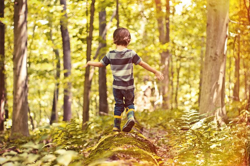 photo of a young person in a forest
