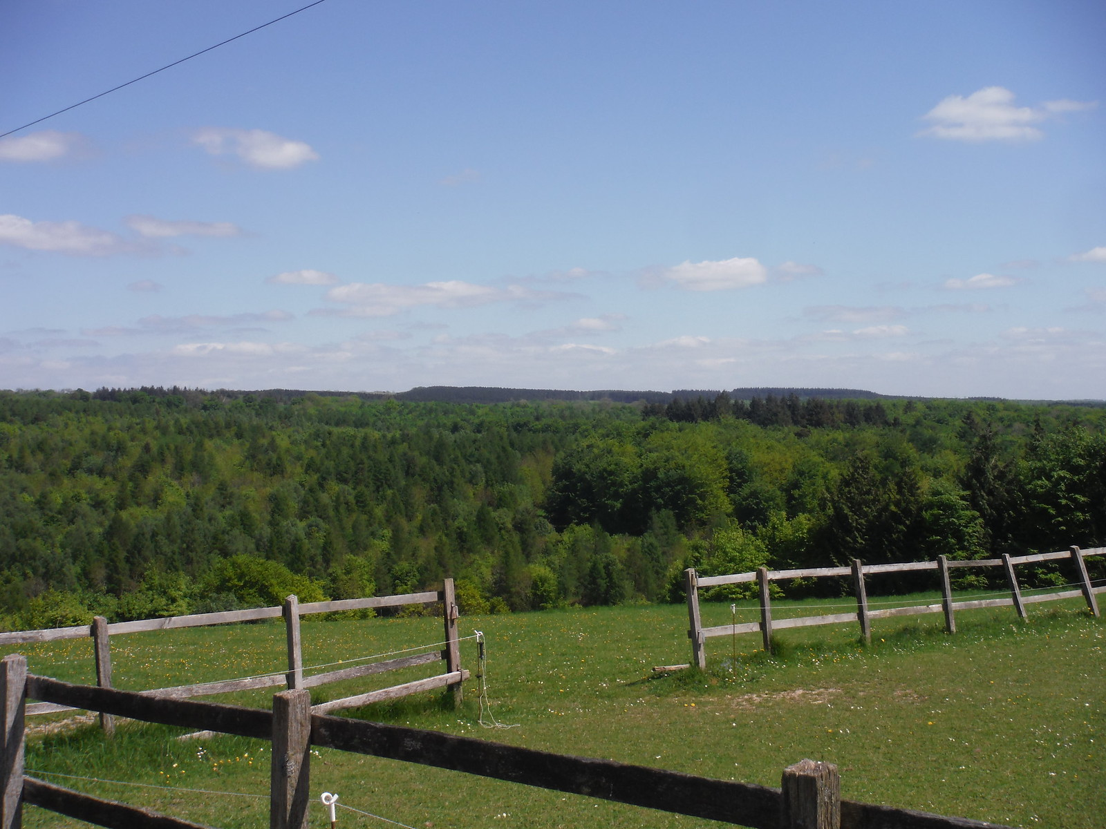 Views across Valley to faraway Woods SWC Walk Rowlands Castle Circular