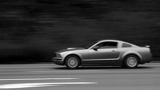 Mustang BW | by marq4porsche