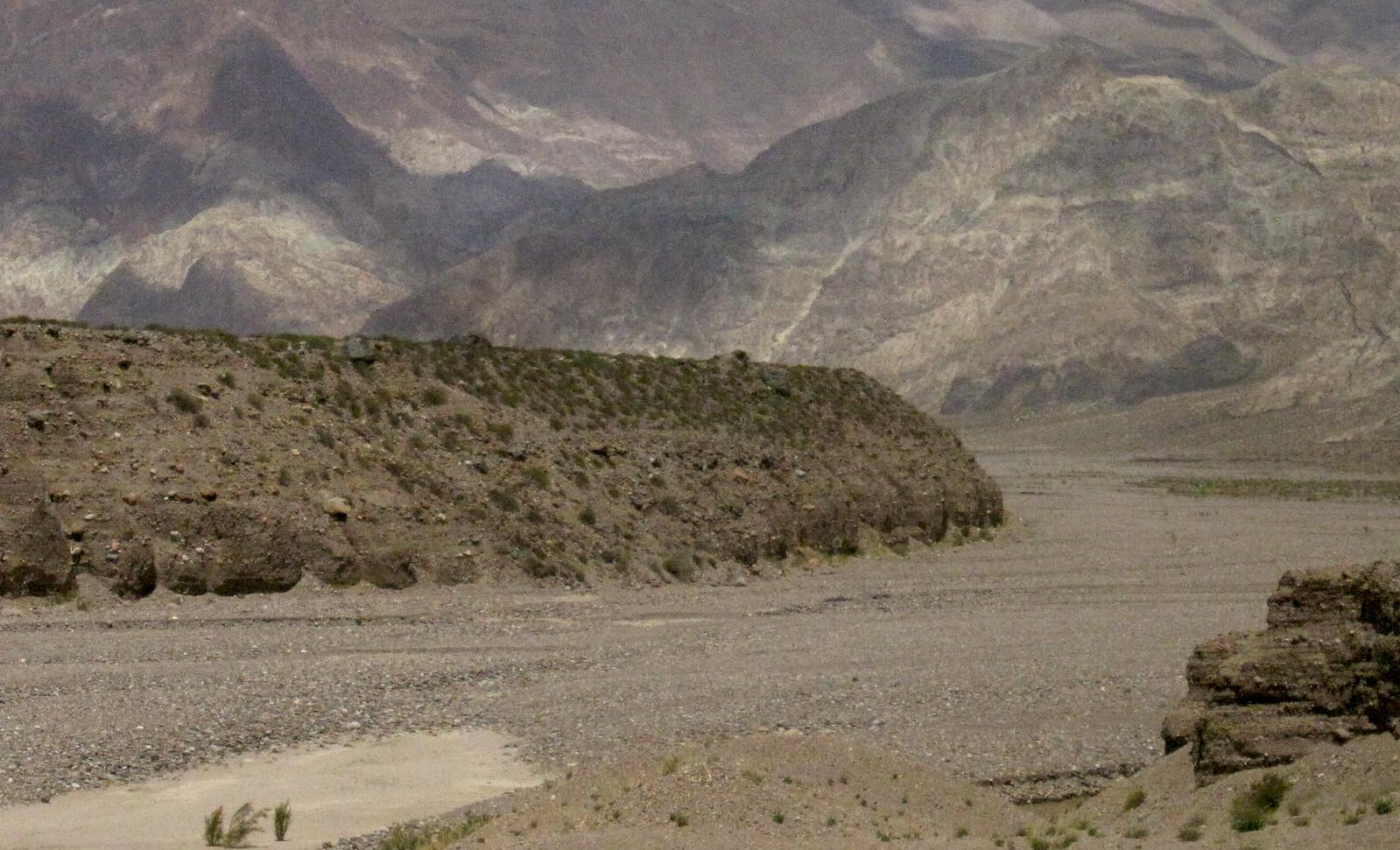 Mendoza 301