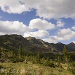 Summit Mountain (near Marias Pass)