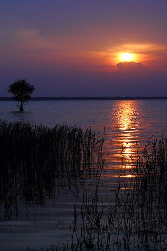 sunset sky lake color southcarolina brilliant monckscorner lakemoultrie mdggraphix