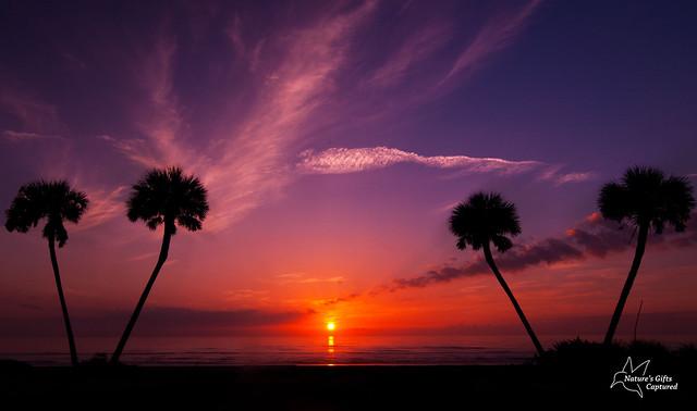 Daytona Sunrise 7/21/12