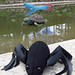Spidey scaring an ancient turtle. Cal Orcko, dinosaur park. Sucre, Bolivia 24MAR12