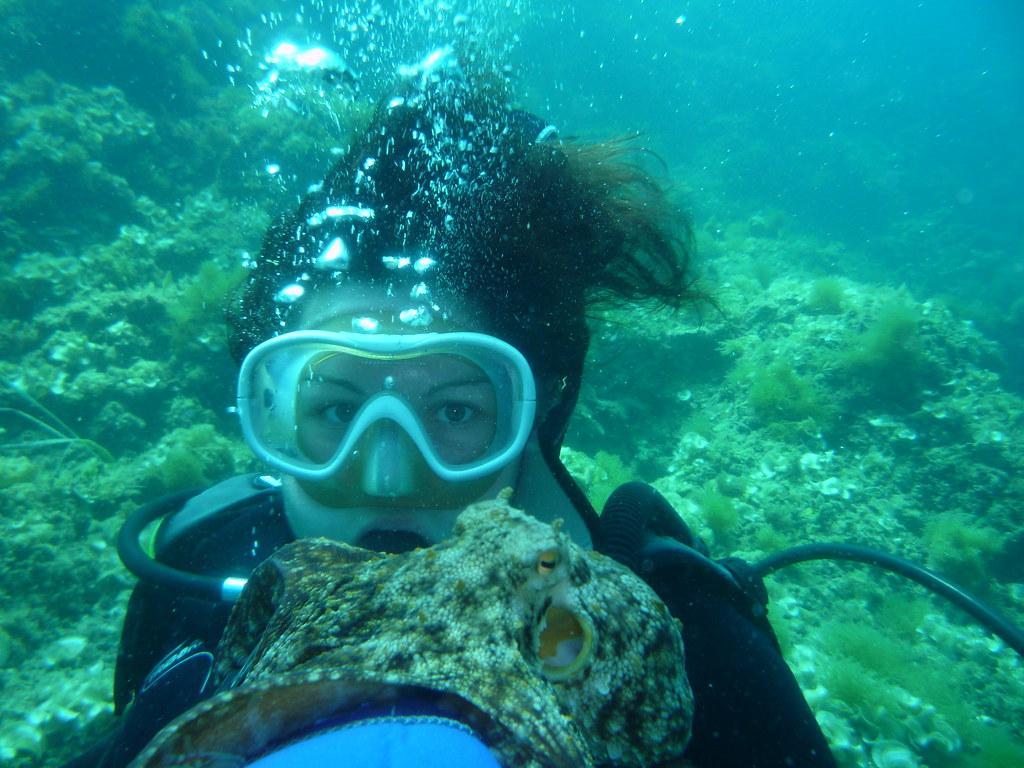 Plongée Sous Marine Le Poulpe Marina De Monastir Tunisie