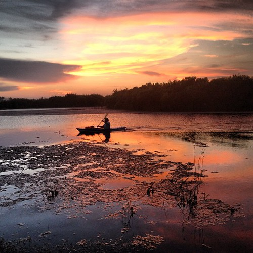 sunset silhouette square squareformat sugarlandtx iphoneography instagramapp sugarlandmemorialpark