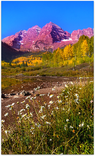 autumn mountains yellow colorado fallcolors denver panasonic aspens wildflowers 20mm aspen wildflower maroonbells whitenight mostphotographed m43 gf1 ruby5