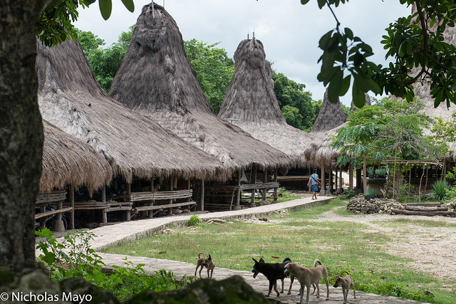 Alang Grass Thatched Village