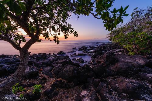 sky usa sun water hawaii unitedstates bigisland locations sunsetsunrise kamuela puako seaocean sceniclandscape