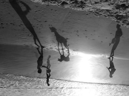 (Explore 65) | by Neta Gov