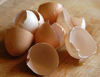 eggshells | by Phú Thịnh Co