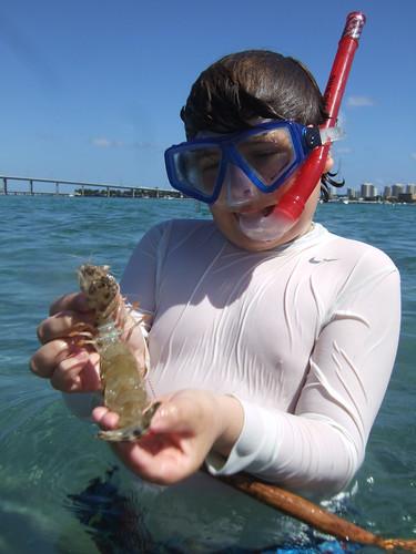 Max with a mantis shrimp