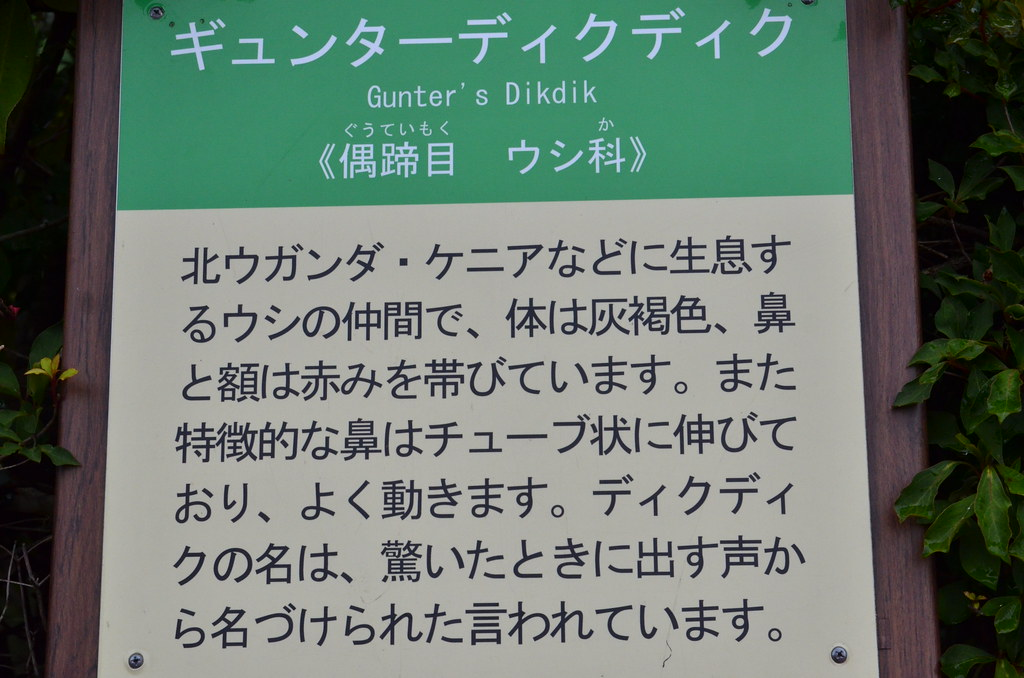 20120623_111232_FujiTKN