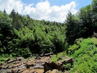 Blackwater State Park WV 8204 | by bobistraveling