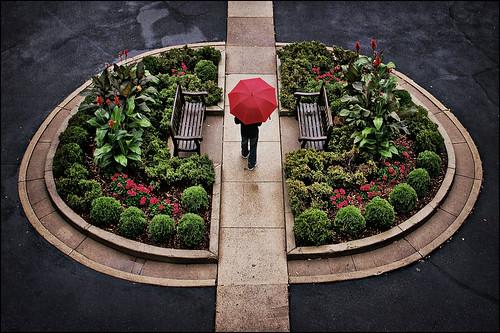 stpaul universityclub universityclubofstpaul garden flowers driveway sidewalk symmetrical symmetry rain umbrella twincities minnesota mn redumbrella day circle round
