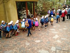 queueing for Ghibli Museum, Tokyo