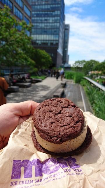Melt Ice Cream Sandwich High Line New York