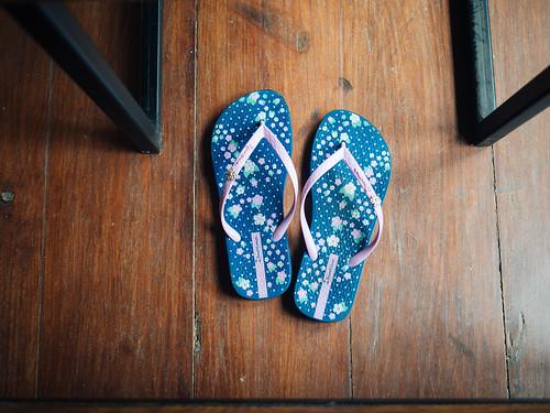 Slippers   by seasonal wanderer