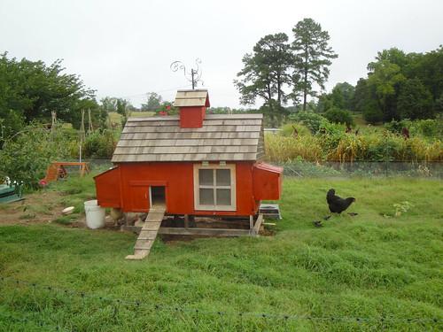 Chicken Coop, Allen's Homestead, Park Hall